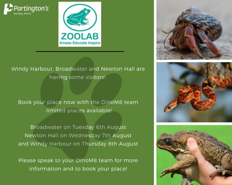 Book your places now for ZooLab dates from 6th - 8th August across our Fylde Coast Holiday Parks! 🕷🦗